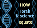 How Torah and Science Equate