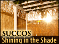 Succos: Shining in the Shade