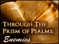 Through the Prism of Psalms: Enemies