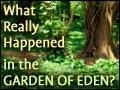 What Really Happened in the Garden of Eden?