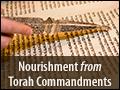 Nourishment From Torah Commandments
