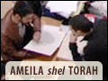 Ameila Shel Torah