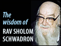 The Wisdom of  Rav Sholom Schwadron