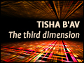 Tisha B'Av: The Third Dimension
