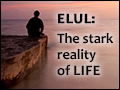 Elul: The Stark Reality of life