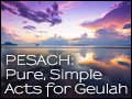 Pesach: Pure, Simple Acts for Geulah