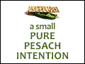 A Small, Pure Pesach Intention