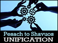 Pesach to Shavuos - Unification
