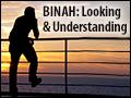 Binah: Looking & Understanding