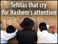 Tefillas That Cry for Hashem's Attention