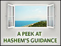 A Peek at Hashem's Guidance