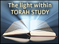 The Light Within Torah Study