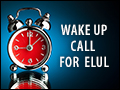 Wake Up Call for Elul