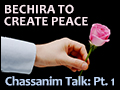 Bechira - Creating Peace Chassanim Talk: Pt. 1