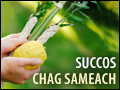 Succos: Chag Sameach!