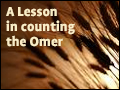 A Lesson in Counting the Omer