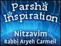 Nitzavim Vayelech: The Power of Your Actions