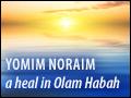 Yomim Noraim: A Heal in Olam Habah